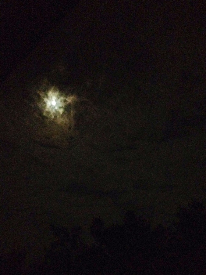 moonlight and clouds